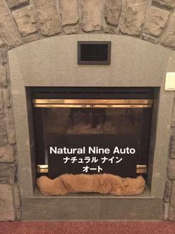 NATURAL NINE AUTO自社ローン